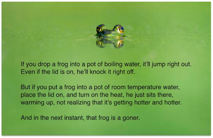 drop a frog