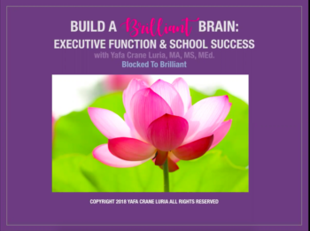 Your Childs Rights Response To >> Building Executive Functions Let Your Adhd Child Say No Blocked